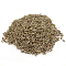 Dill Seed Gourmet Whole-100% Natural-1 lb.-Egypt